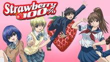 Strawberry 100%